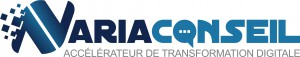logo 13_NARIA CONSEIL_Michel ALTAZIN